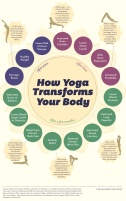 Yoga-Changes-Your-Body-Infographic